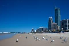 plażowy brzegowy złoto Zdjęcia Royalty Free