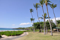 plażowy duży hapuna Hawaii wyspy parka s stan Obrazy Stock