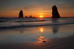 plażowy działo Zdjęcia Stock