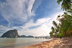 plażowy egzotyczny dziki zdjęcia royalty free