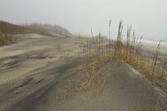 plażowy mgłowy Zdjęcia Stock