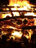 Plażowy ogień Fotografia Stock