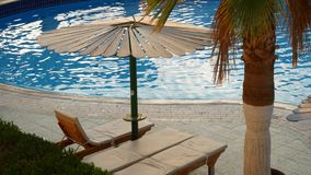 Plażowy parasol i drzewko palmowe przedstawiający w odbiciu okulary przeciwsłoneczni zdjęcie wideo