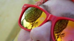 Plażowy parasol i drzewko palmowe przedstawiający w odbiciu okulary przeciwsłoneczni zbiory wideo