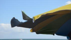 Plażowy parasol rozwija w wiatrze na dennej plaży
