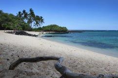 plażowy piękny hawajczyk fotografia stock