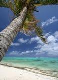 plażowy piękny zwrotnik Fotografia Stock