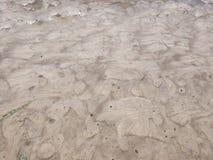 Plażowy piasek przy przypływem przy Oregon wybrzeżem woda drenuje i barwiący piasek wiruje sztukę w szeregu miniaturowych kopów zdjęcia stock