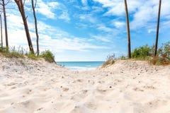 Plażowy przegapiający morze z niebieskim niebem obraz royalty free