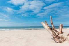 Plażowy przegapiający morze z niebieskim niebem zdjęcie stock