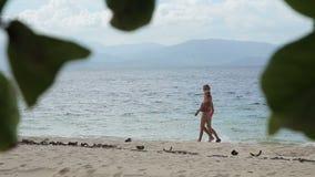 plażowy rodzinny szczęśliwy odprowadzenie zbiory