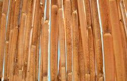 Plażowy słońce parasola textured tło Zbliżenie tekstura Bambo Obrazy Royalty Free