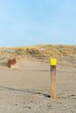 Plażowy słup fotografia stock