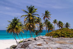 plażowy tropikalny Zdjęcia Stock