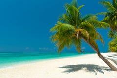 plażowy tropikalny nieporuszony obrazy stock