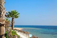 plażowy wczesny poranek Zdjęcia Stock