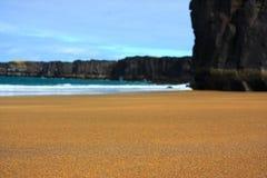 plażowy złoty Fotografia Stock