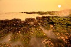 plażowy zieleni krajobrazu gałęzatki wschód słońca Obrazy Royalty Free
