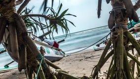 Plażowy zwrotnik Sri Lanka Piękny Brzegowy Timelapse 4k zbiory