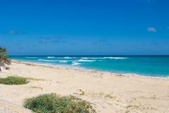 plaży tropikalny opustoszały Obraz Royalty Free