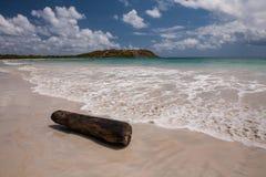 Plaża Anse Trabaud, Martinique Zdjęcia Royalty Free