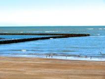Plaża Chipiona w Cadiz Fotografia Stock