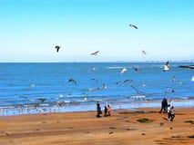 Plaża Chipiona w Cadiz Zdjęcie Royalty Free