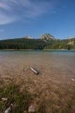 Plaża czarny jezioro, Durmitor, Montenegro Obraz Stock