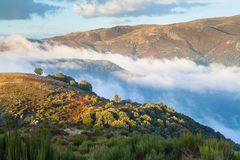 Low clouds and autumn colors in the catalan highlands stock images