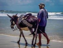 Plaże Brazylia - Natal, rio grande robi Norte Zdjęcie Stock