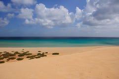 Plaża i ocean obraz stock