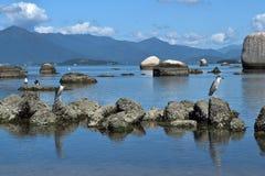 Plaża Itaguaçu-Florianà ³ polisa Obrazy Stock