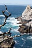 Plaża, Kalifornia Zdjęcia Stock