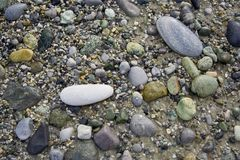 plaża kamienie Obraz Royalty Free
