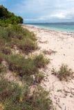 Plaża Krajowy zachodu park w Bali Obraz Royalty Free