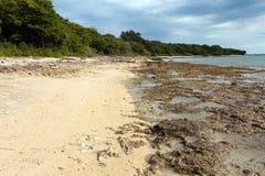 Plaża Krajowy zachodu park w Bali Zdjęcie Stock