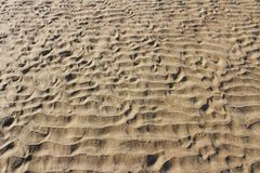 Plaż linie Obraz Stock