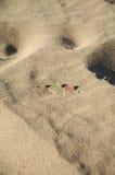 plaż monety Zdjęcia Stock