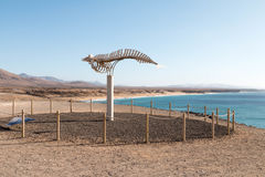 Plaża na Fuerteventura Fotografia Stock