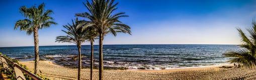 Plaża, niebieskie niebo, palmy, raj, wakacje Zdjęcie Stock