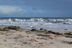 plażowa chmurna linii brzegowej pogody zima fotografia stock