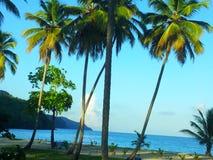 Plażowa Domincan republika Zdjęcia Royalty Free