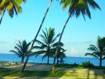Plażowa Domincan republika Zdjęcie Royalty Free