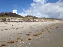 Plażowa erozja Fotografia Stock