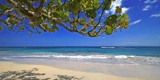 plażowa karaibska scena Obraz Stock