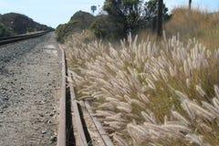 Plażowa linia kolejowa Zdjęcia Royalty Free