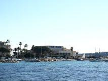 plażowa palma Obrazy Royalty Free