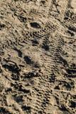 Plażowa piasek tekstura Obraz Stock