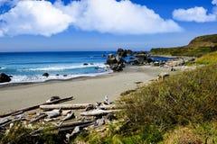 Plażowa scena na Pacyficznym oceanie Zdjęcia Stock