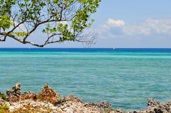 Plażowa wyspa Zanzibar Obrazy Stock